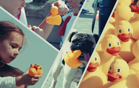 Rubber Duck Race fun